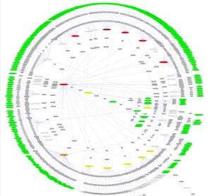 Genealogia http://www.graphviz.org blogersii sii