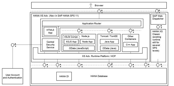 Architektura XS oraz XSA dla HANA 1.0 SPS11 on premise - Mały Glosariusz SAP (część II)